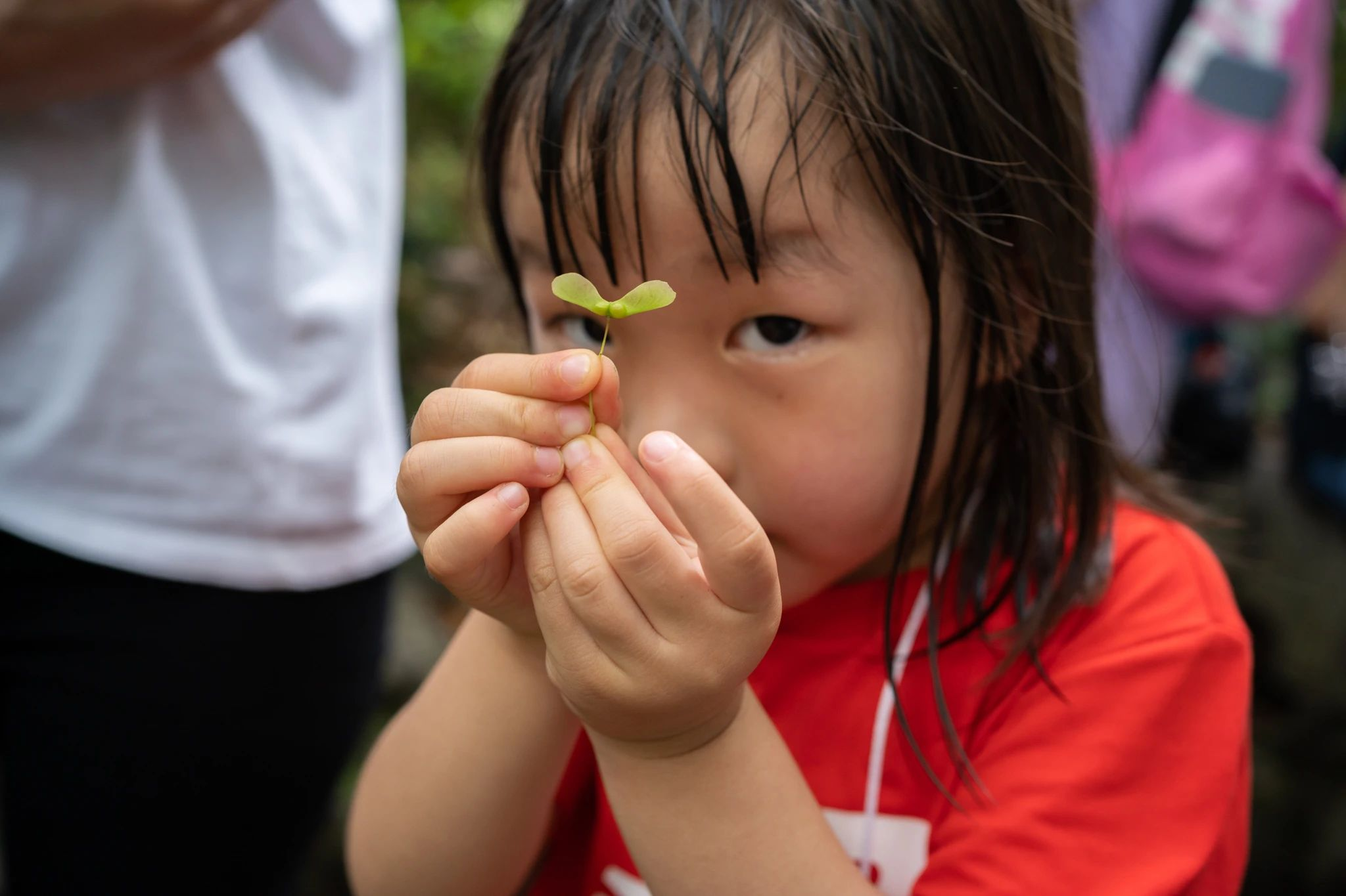 Multisensorial Education in the Outdoor Classroom