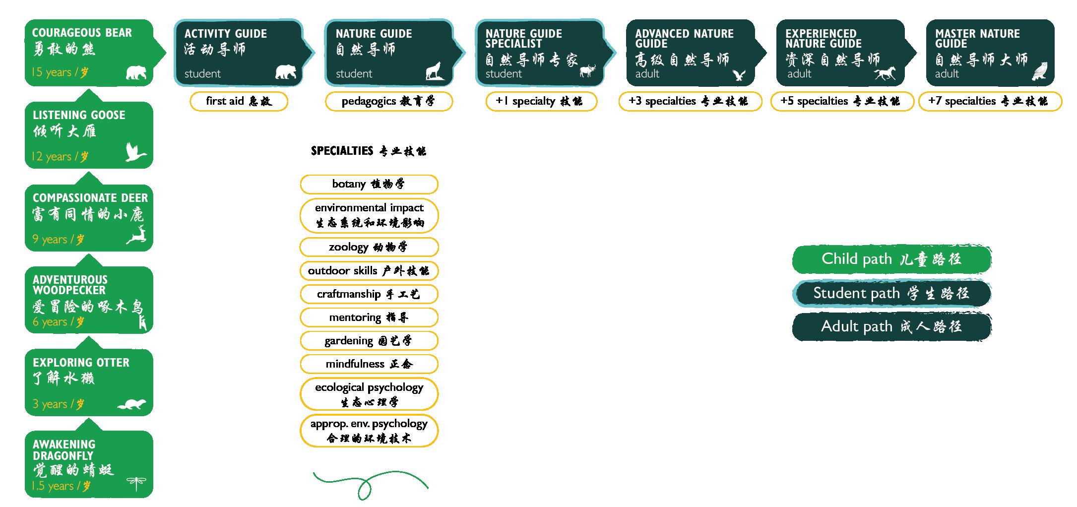 Ark Graphic