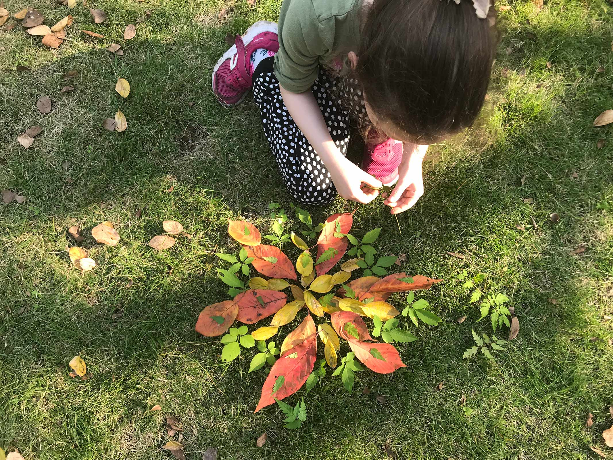 girl collecting leafs in nature